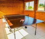 Настольный теннис Дом Солнца фото